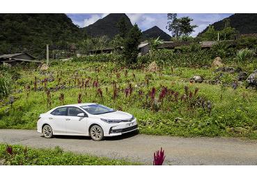 Doanh số bán hàng của Toyota Việt Nam tháng 1/2019 tăng 48%